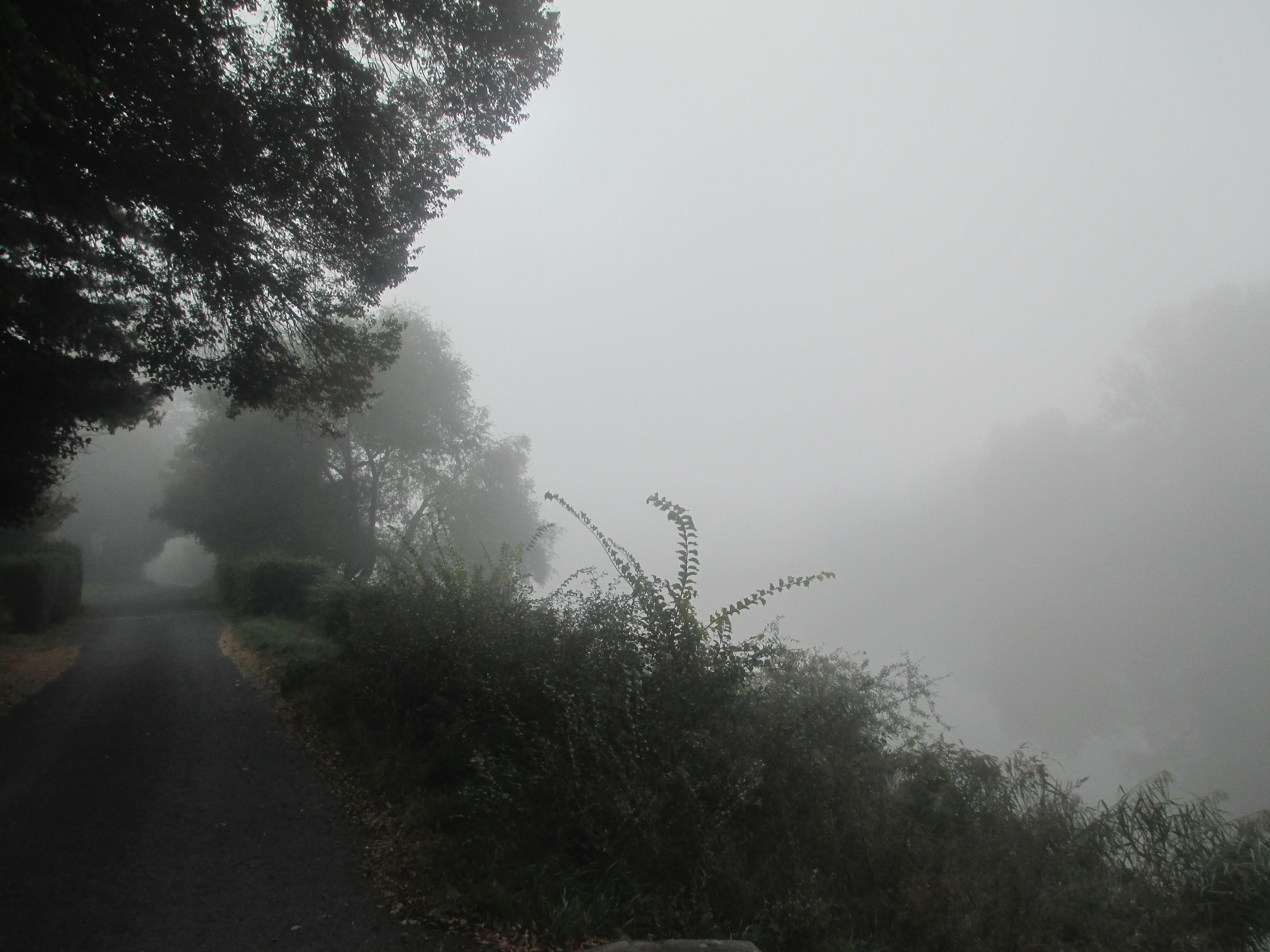 Počasí v tlakové výši: Podzimní tlaková výše s mlhou.